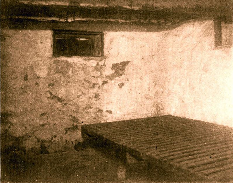 First known protograph of the cellar, late nineteenth century